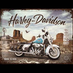Bilde av Harley-Davidson R66 Road King Classic